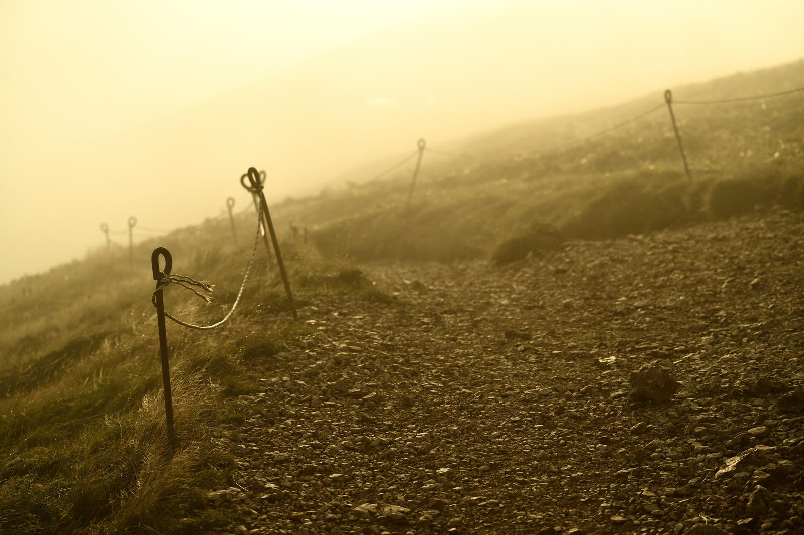 「霧が立ち込める夕暮れの山道」の写真