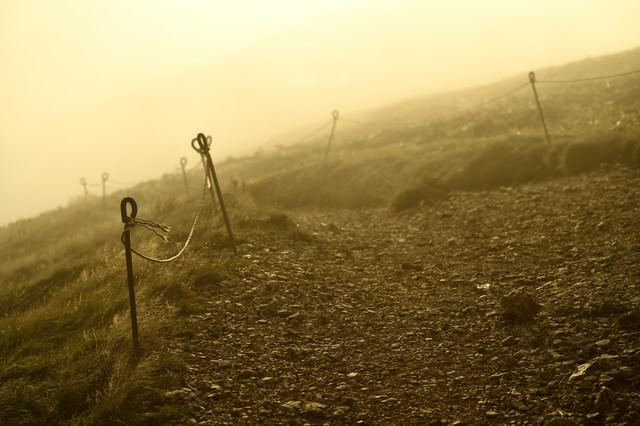 霧が立ち込める夕暮れの山道の写真
