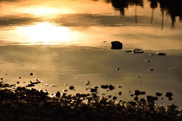 夕日に染まる水たまりの写真