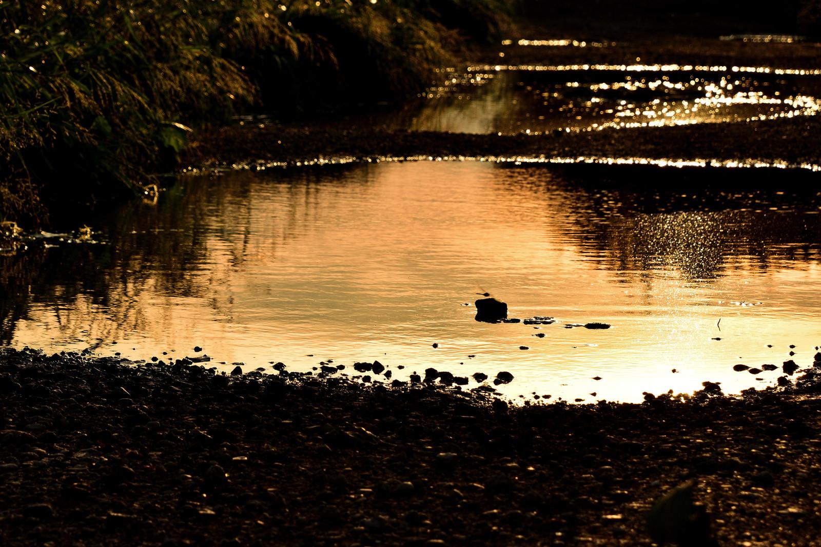 「夕暮れ染まる大きな水溜まり」の写真