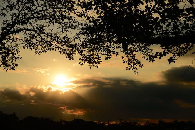 夕暮れの風景の写真