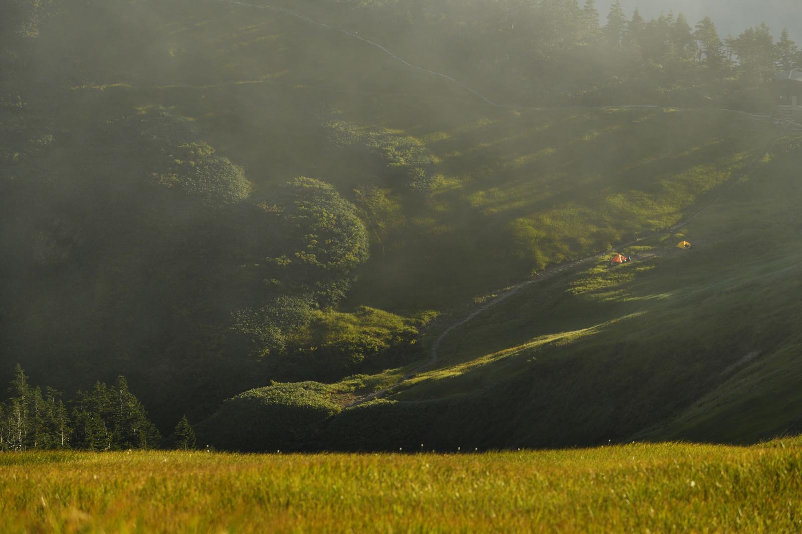 「草紅葉と夕日に伸びる影」の写真