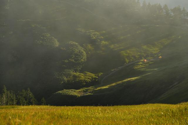 草紅葉と夕日に伸びる影の写真