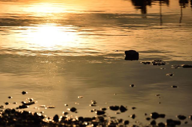 水溜りの中の夕日の写真