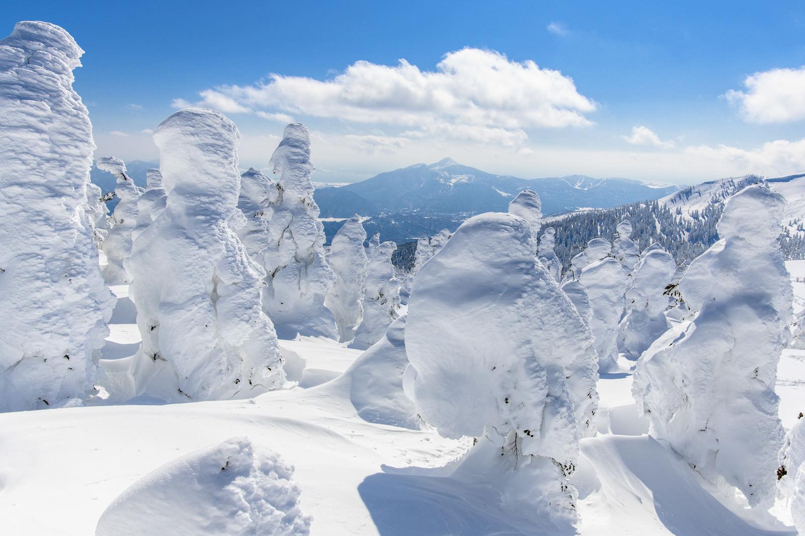 「樹氷と磐梯山(バンダイサン)」の写真