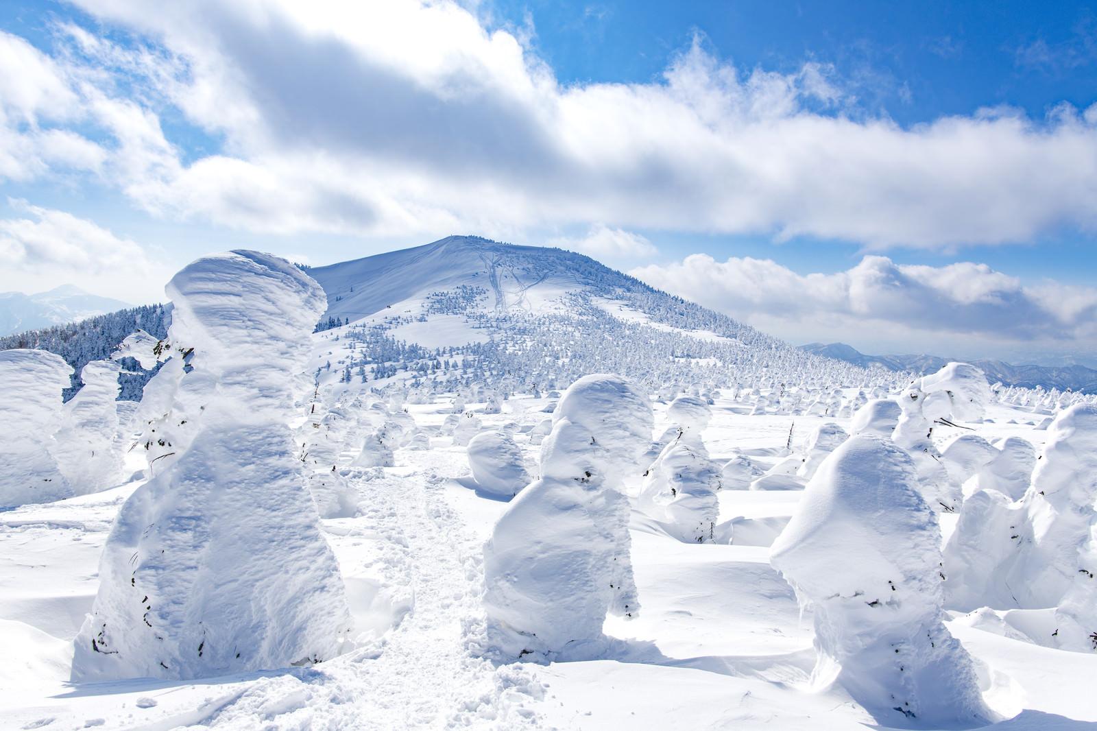 「樹氷と西大嶺(ニシダイテン)」の写真