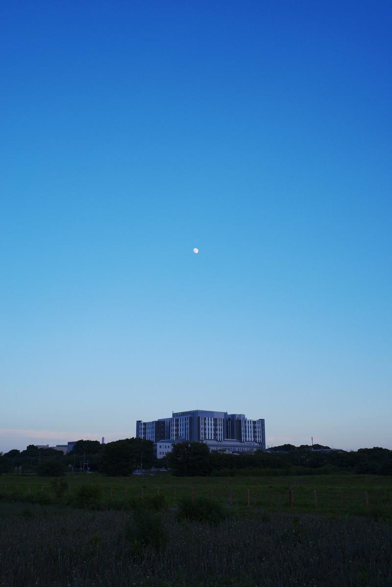 「浮かぶ月」の写真