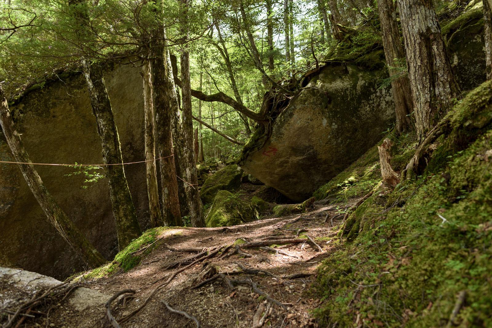 「巨大な岩が転がる山中」の写真