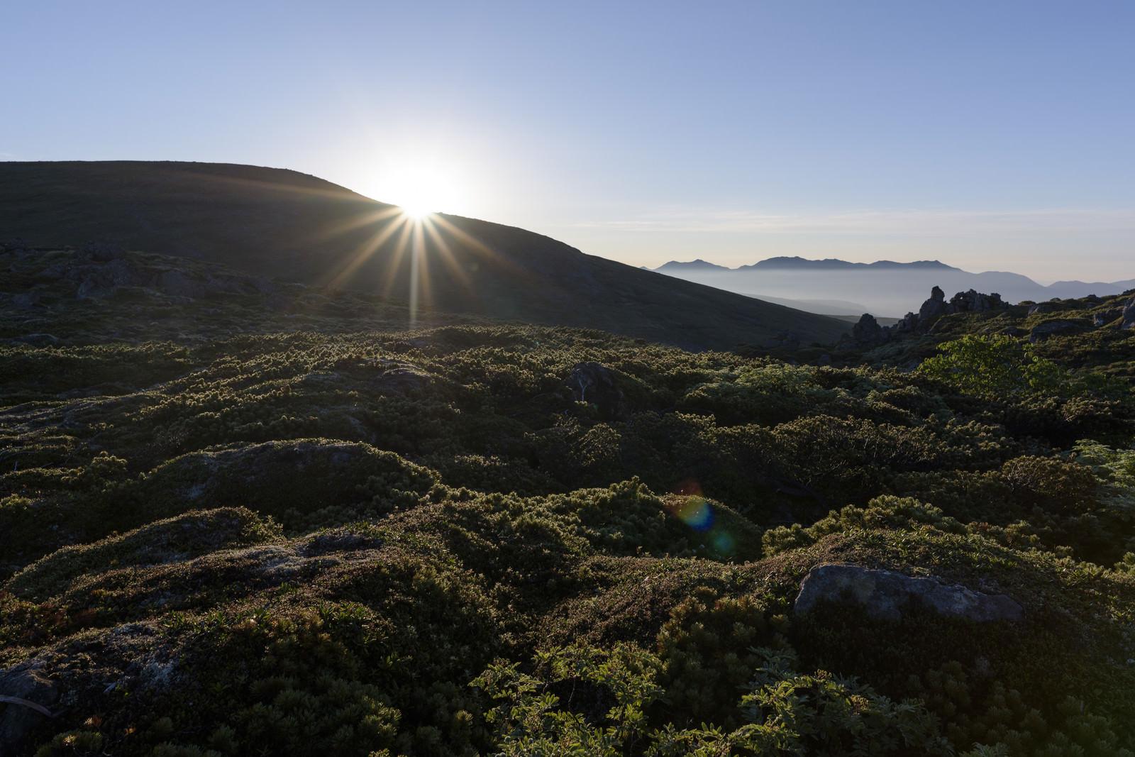 「朝日が差す大雪山日本庭園」の写真