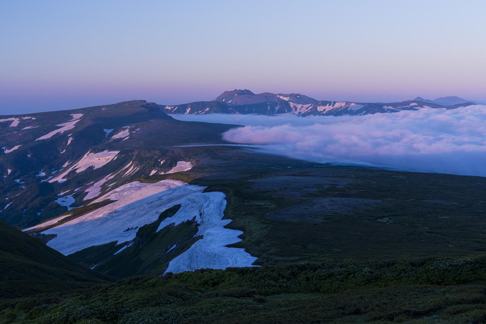 「朝焼けで紫に染まる空と雲海と高根ヶ原とトムラウシ山」の写真