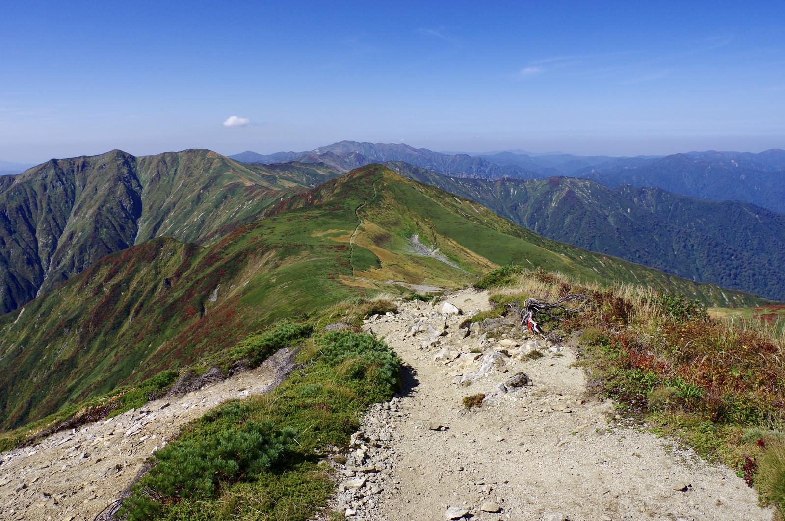 「大朝日岳山頂付近の登山道」の写真