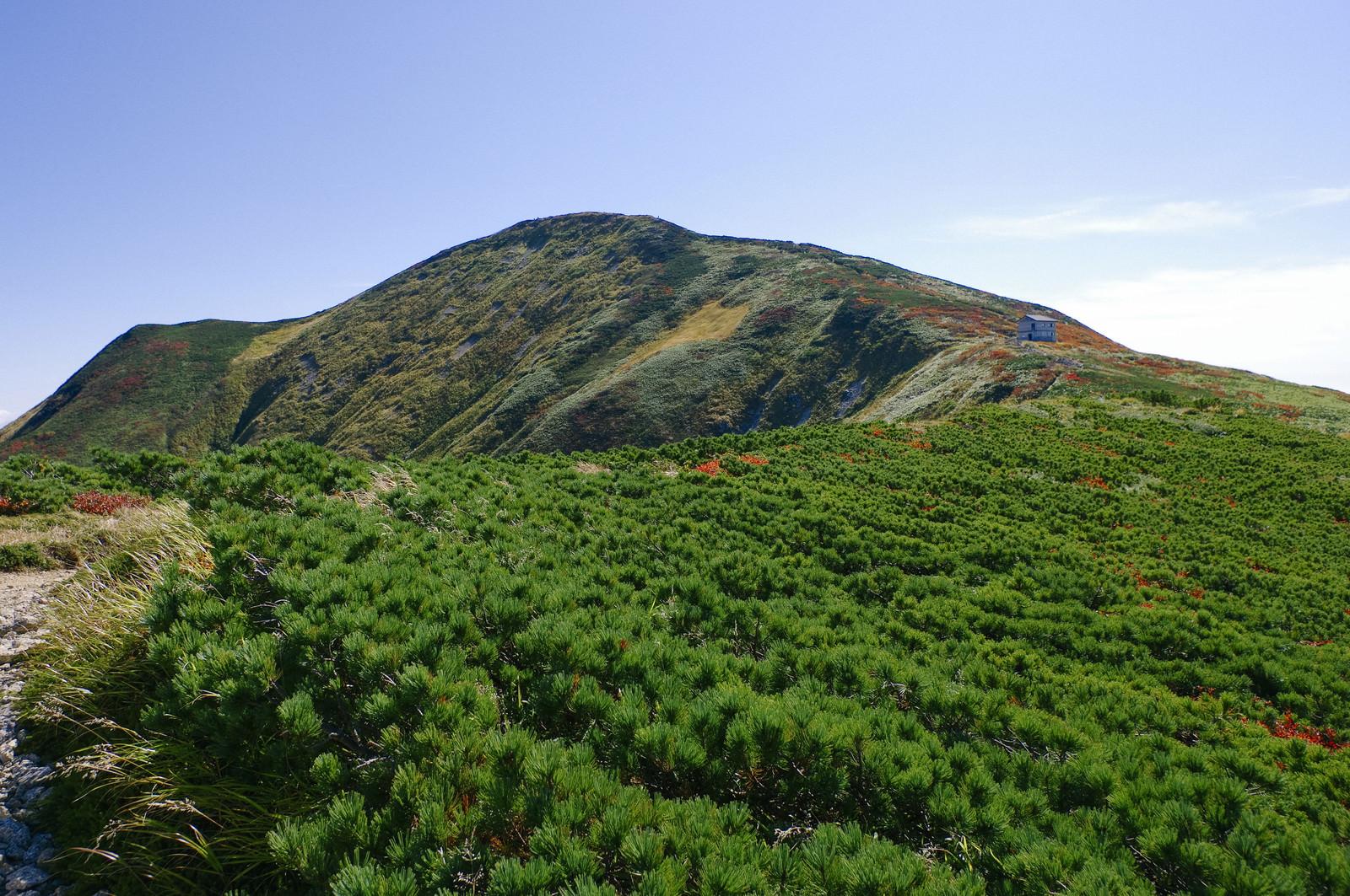 「大朝日岳稜線の景色」の写真