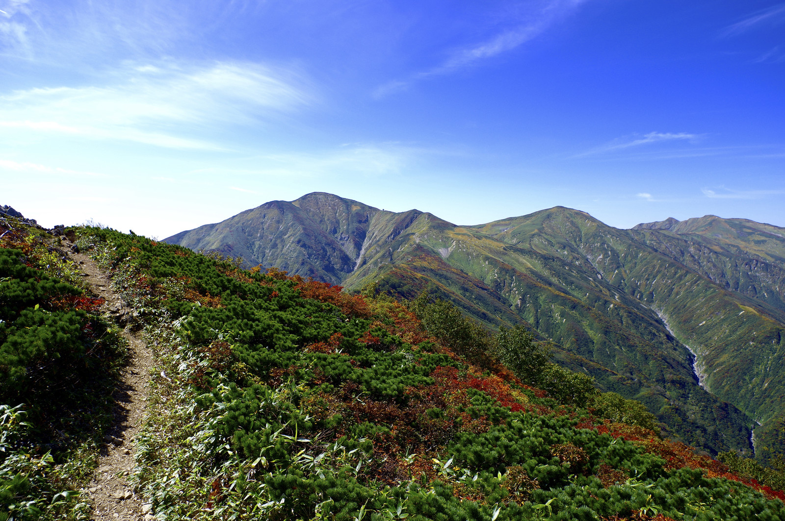 「小朝日岳から大朝日岳へと向かう稜線の道」の写真