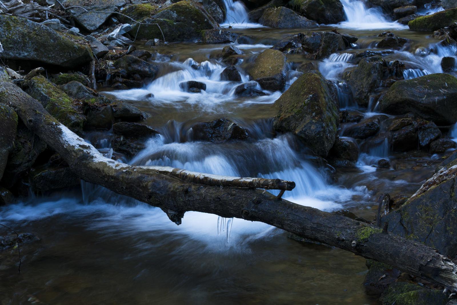 「甲武信ヶ岳毛木平を流れる渓流」の写真