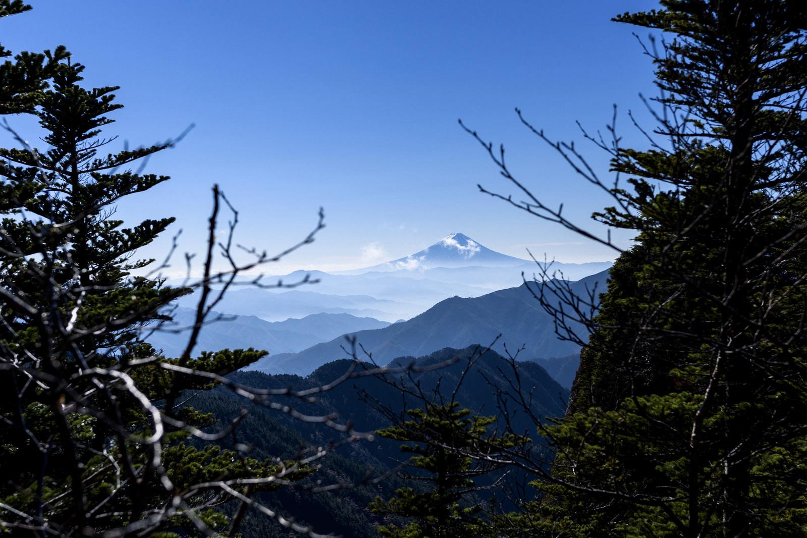 「甲武信ヶ岳稜線から見える富士山」の写真