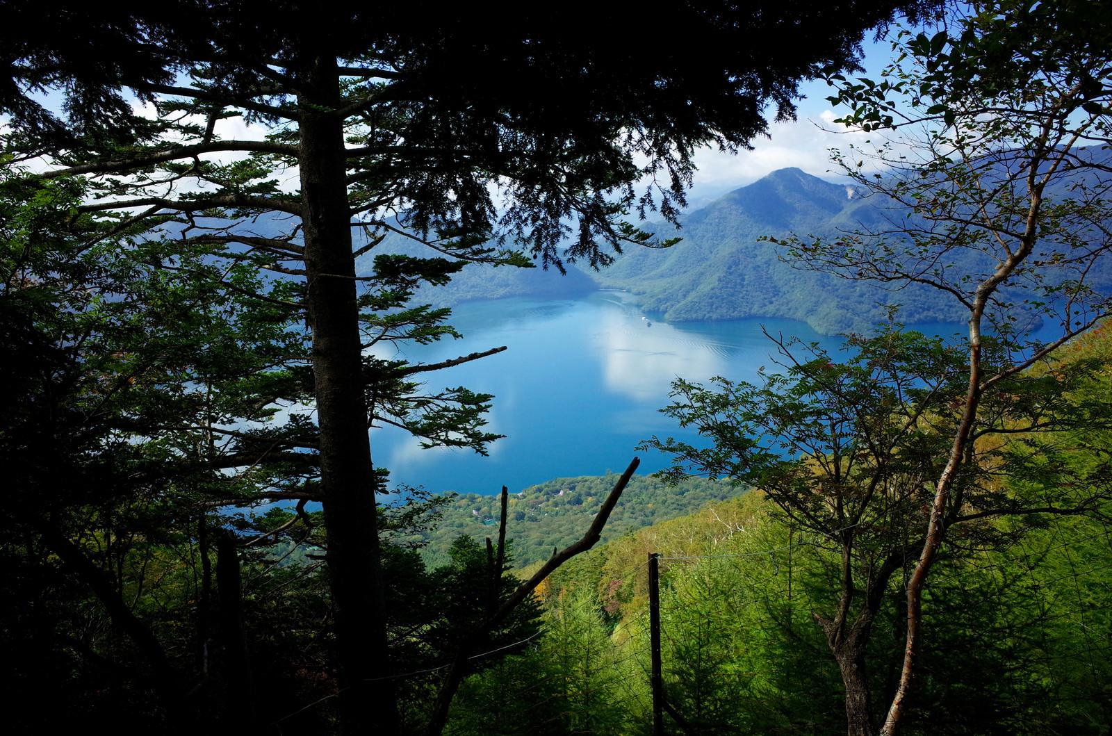 「男体山登山道から見下ろす中禅寺湖(ちゅうぜんじこ)」の写真