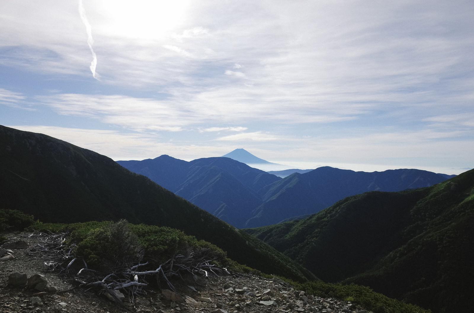 「聖岳登山道から見る富士山」の写真