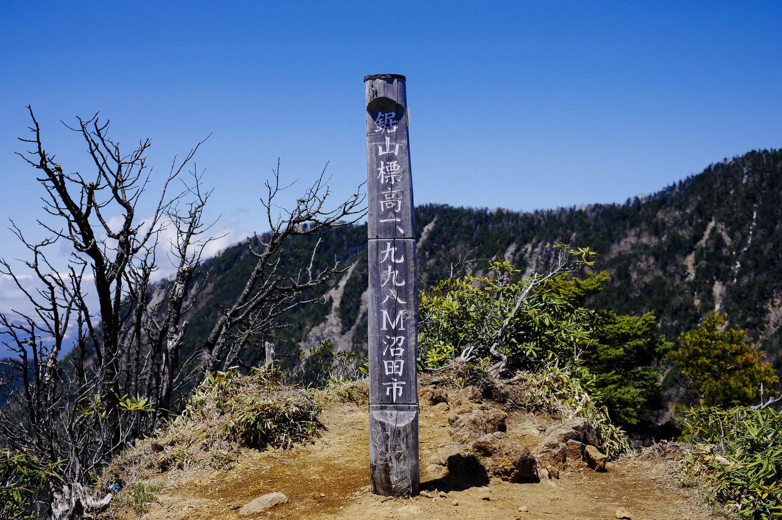 「皇海山手前の鋸山の山頂碑」の写真