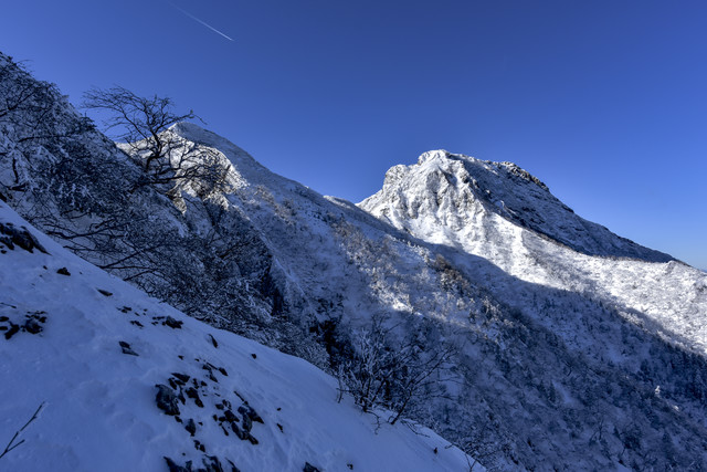 冬の文三郎尾根下部から見上げる阿弥陀岳の写真