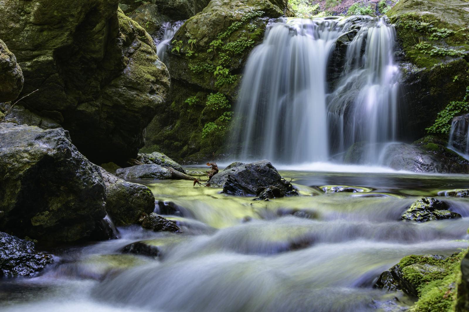 「川苔山を流れる渓流と滝」の写真