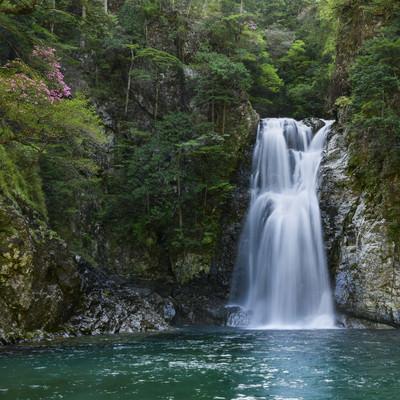 堂倉滝(大杉谷)の写真