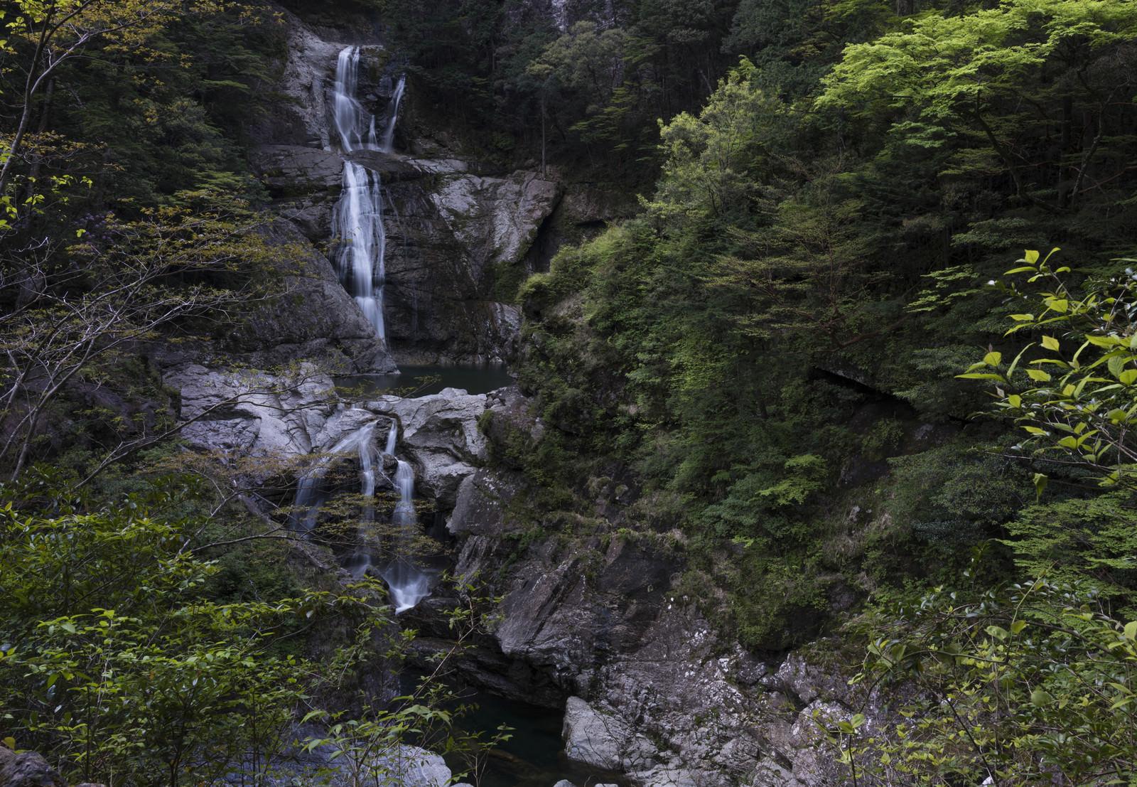 「滝百選にも選ばれている七ツ釜滝(大杉谷)」の写真