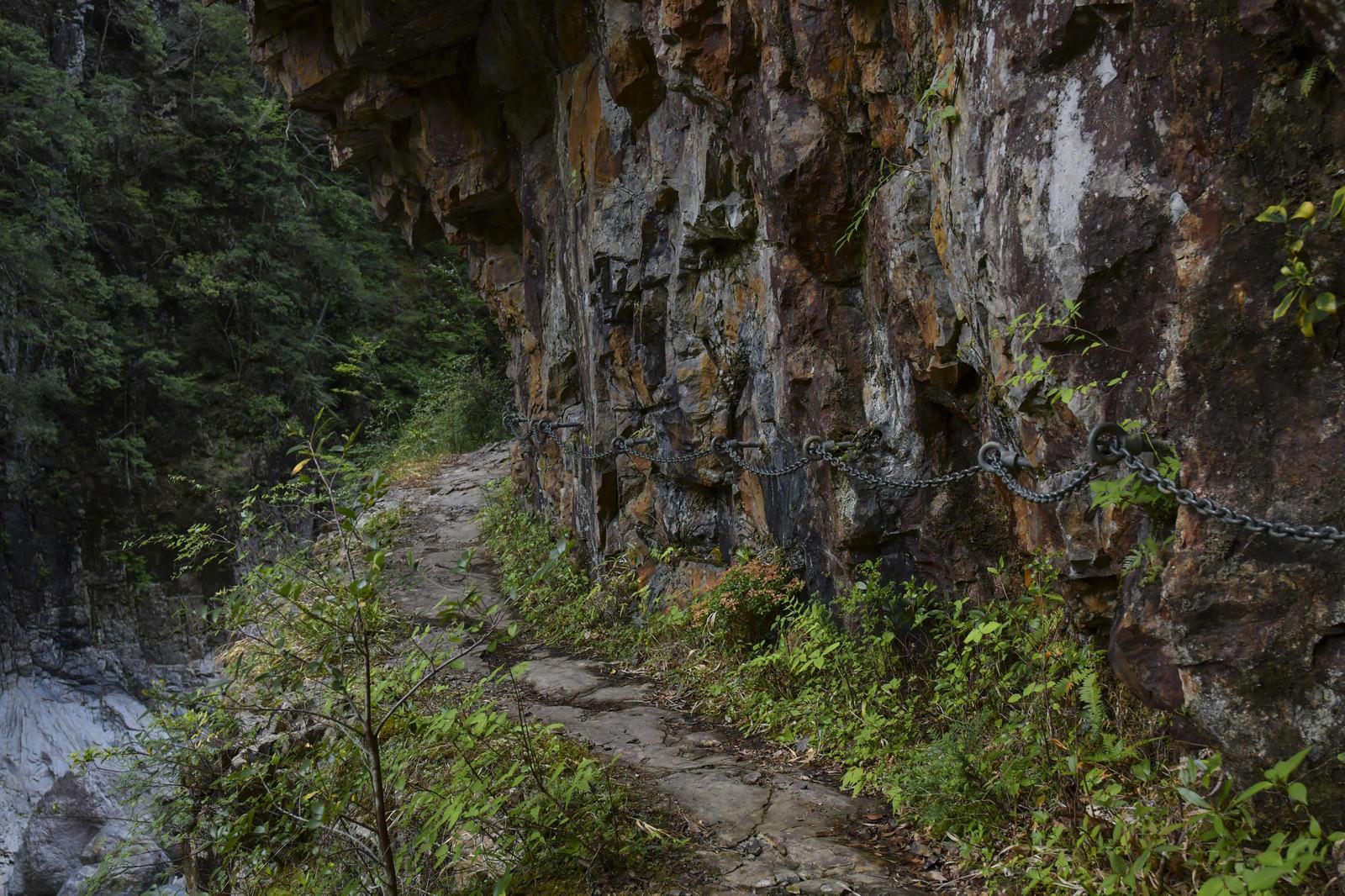 「鎖の手すりが整備された大杉谷登山道」の写真