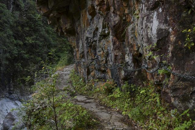 鎖の手すりが整備された大杉谷登山道の写真