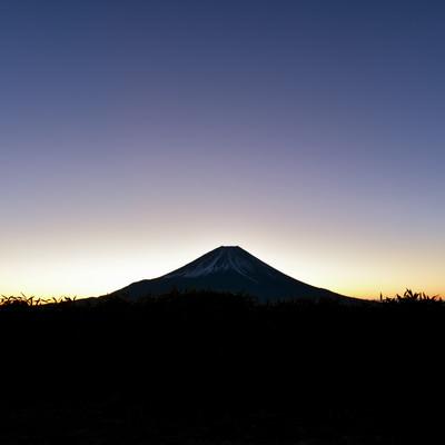 朝焼けを待つ富士山の写真
