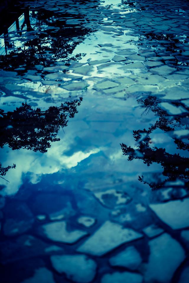 水溜りに映る空と木の写真