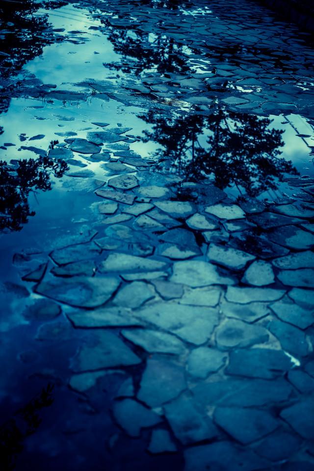雨上がりの水溜りの写真