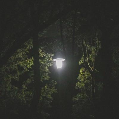 「深夜の公園にある街灯」の写真素材