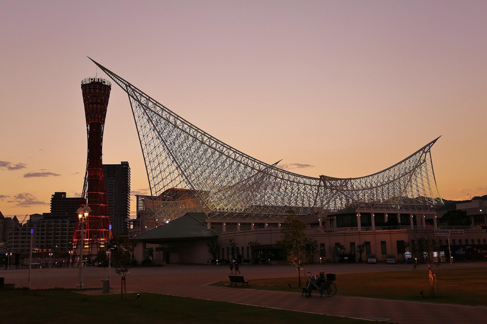 「夕焼けに染まる神戸ポートタワーと神戸海洋博物館 | 写真の無料素材・フリー素材 - ぱくたそ」の写真