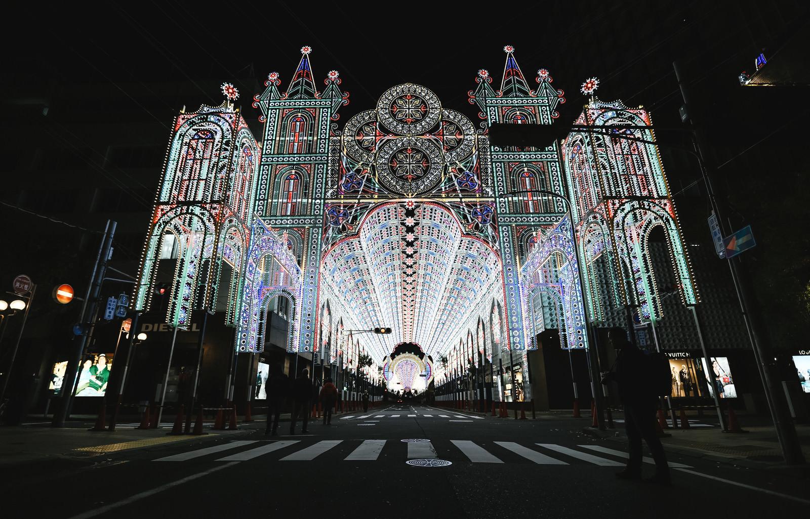 「ライトアップされた電飾(神戸ルミナリエ)」の写真