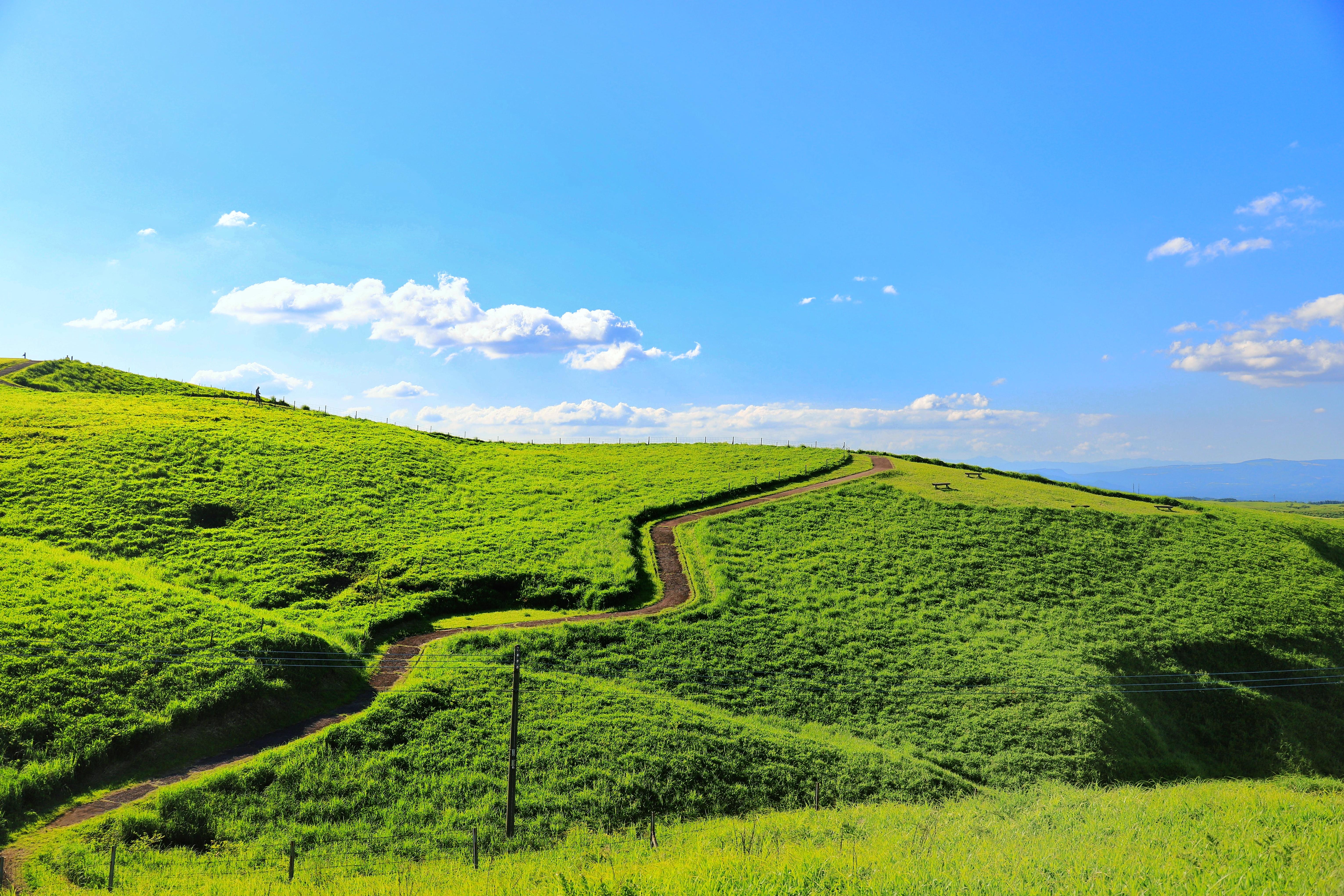 丘に広がる原っぱと青空の写真