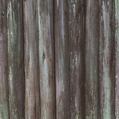 「コケの生えた板(テクスチャー)」の写真素材
