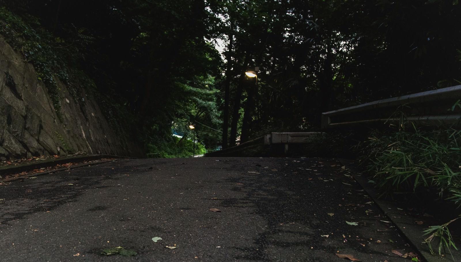 「夕暮れ過ぎの不気味な道夕暮れ過ぎの不気味な道」のフリー写真素材を拡大