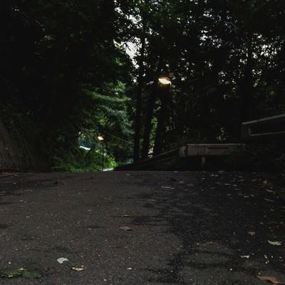 「夕暮れ過ぎの不気味な道」の写真素材