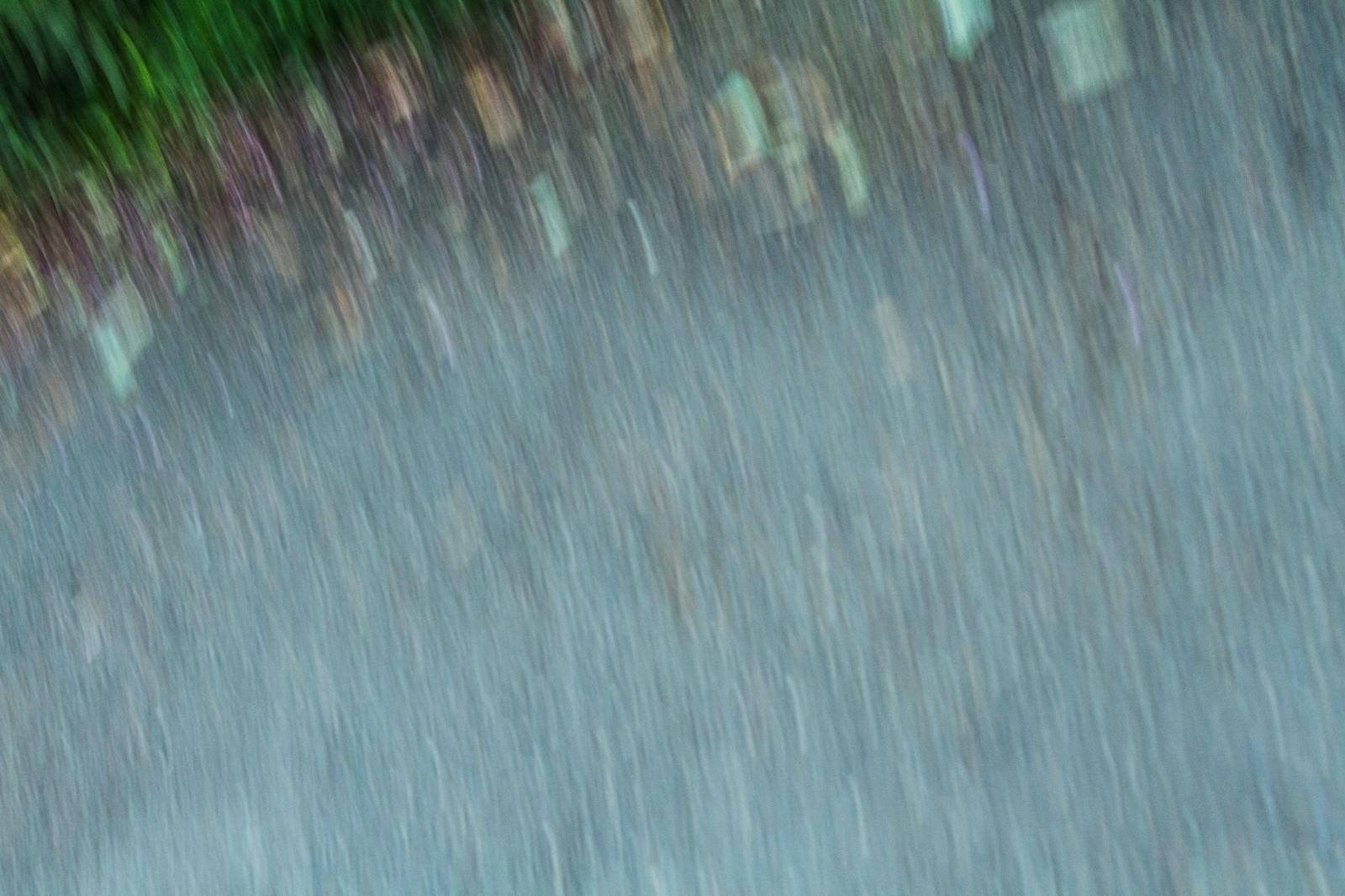 「慄く」の写真