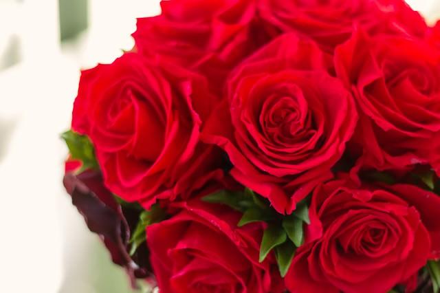 赤いバラのブーケ(父の日・母の日)の写真