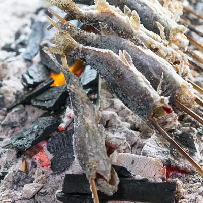 「炭火で焼かれるニジマス」の写真素材