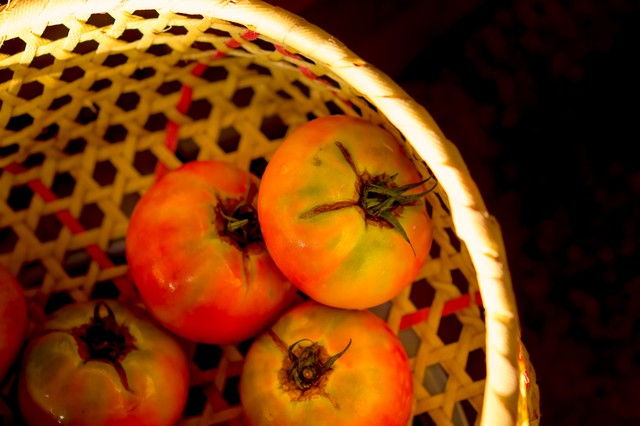 ザルとトマトの写真