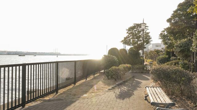 海芝浦駅に隣接している海芝公園の写真