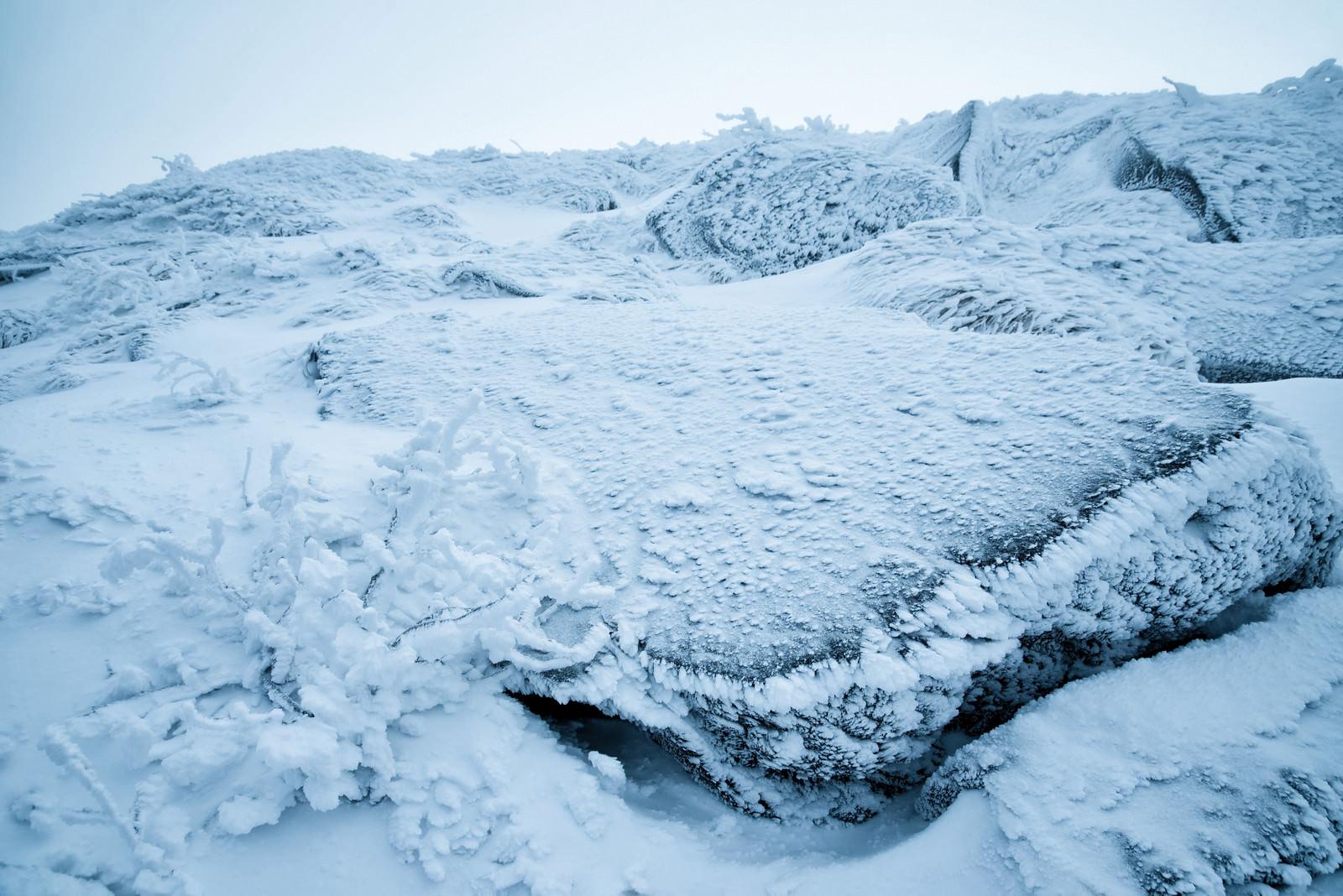 「小さな樹氷と凍りついた岩肌」の写真