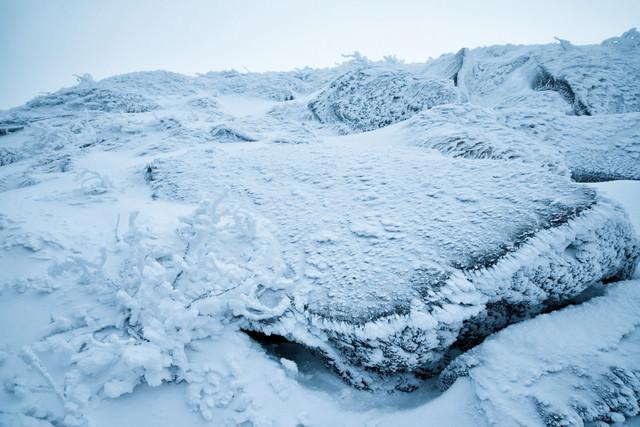 小さな樹氷と凍りついた岩肌の写真