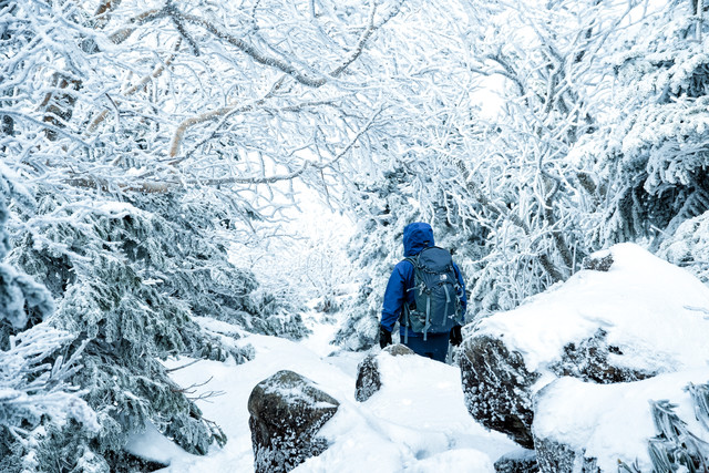 樹氷の中を進む登山者の写真