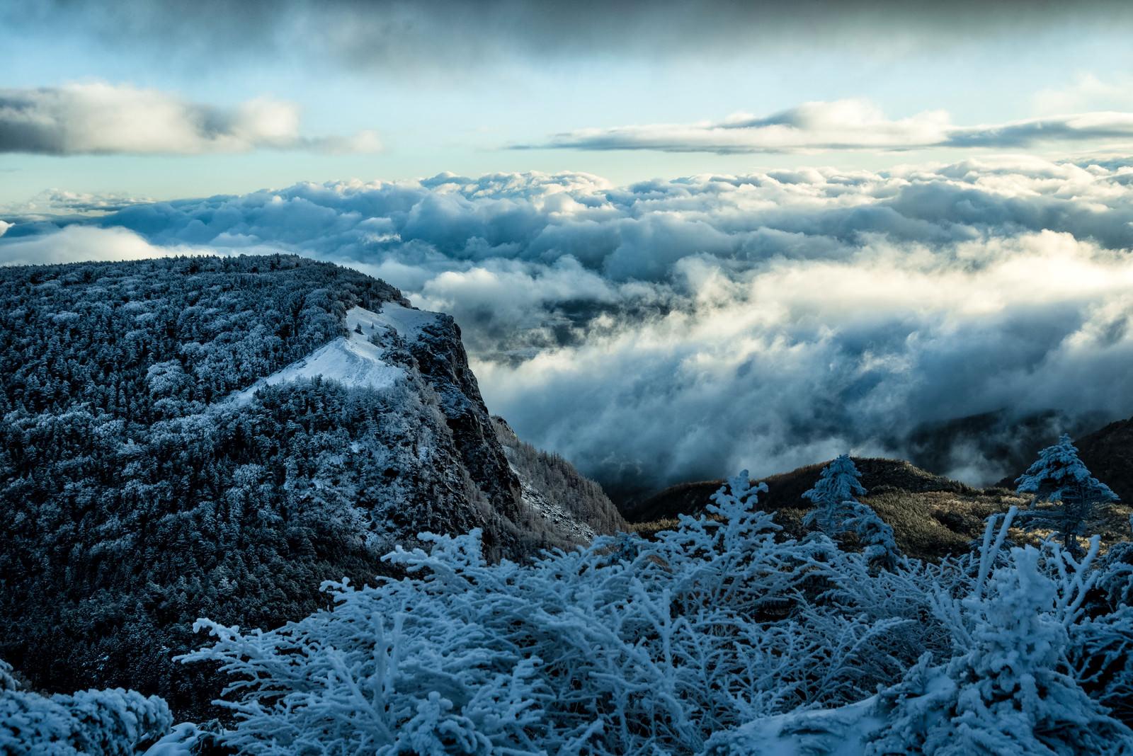 「稲子岳と雲海の大パノラマ」の写真