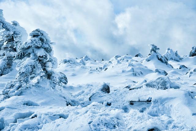 積雪で埋まる樹氷と湧き上がる雲(中山峠展望台)の写真
