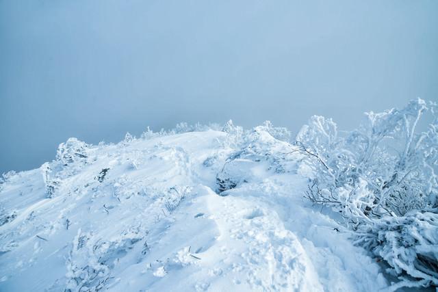 積雪の登山道に残る足跡の写真
