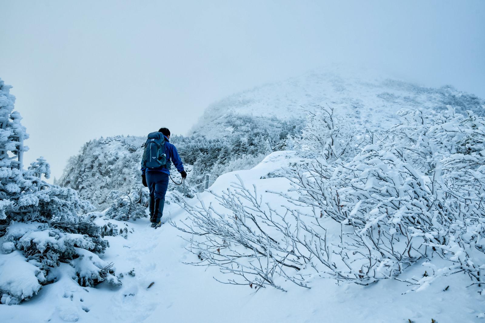 「立ち込めたガスで隠れる山頂を目指す登山者」の写真
